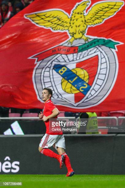 Alex Grimaldo of SL Benfica celebrates scoring SL Benfica first goal during the Liga NOS match between SL Benfica and CD Nacional at Estadio da Luz...