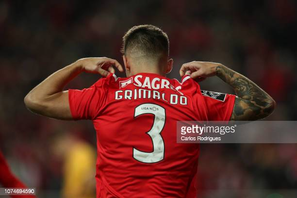 Alex Grimaldo of SL Benfica celebrates scoring SL Benfica third goal during the Liga NOS match between SL Benfica and SC Braga at Estadio da Luz on...