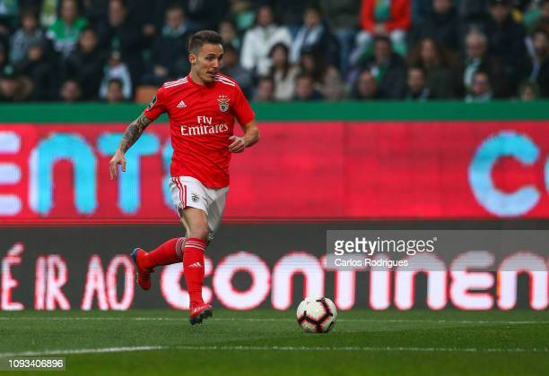 Alex Grimaldo of SL Benfica during the Liga NOS match between Sporting CP and SL Benfica at Estadio Jose Alvalade on February 3 2019 in Lisbon...