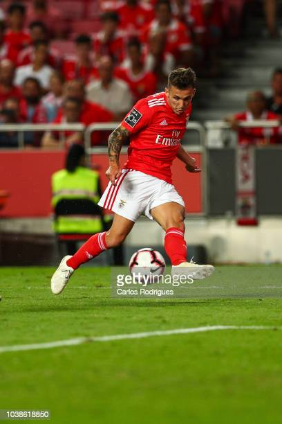 Alex Grimaldo of SL Benfica during the Liga NOS match between SL Benfica and CD Aves at Estadio da Luz on September 23 2018 in Lisbon Portugal