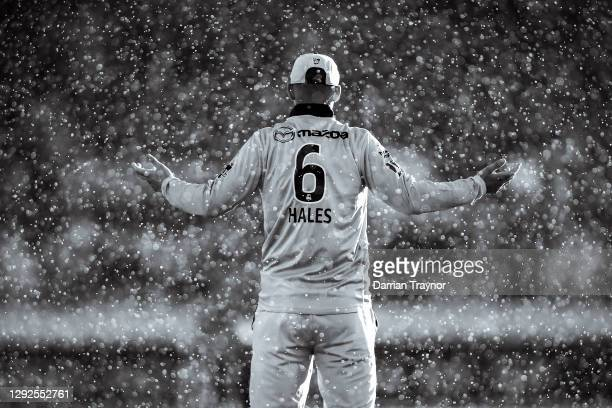 Alex Hales of the Thunder asks the umpires about the rain during the Big Bash League match between the Sydney Thunder and the Perth Scorchers at...