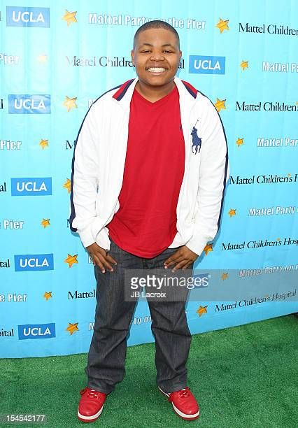 Alex Jones attends the Mattel Party On The Pier Benefiting Mattel Children's Hospital UCLA at Pacific Park Santa Monica Pier on October 21 2012 in...