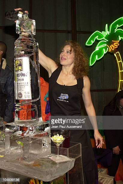 Alex Kingston bartending at the MakeAWish Foundation wine tasting and auction fundraiser