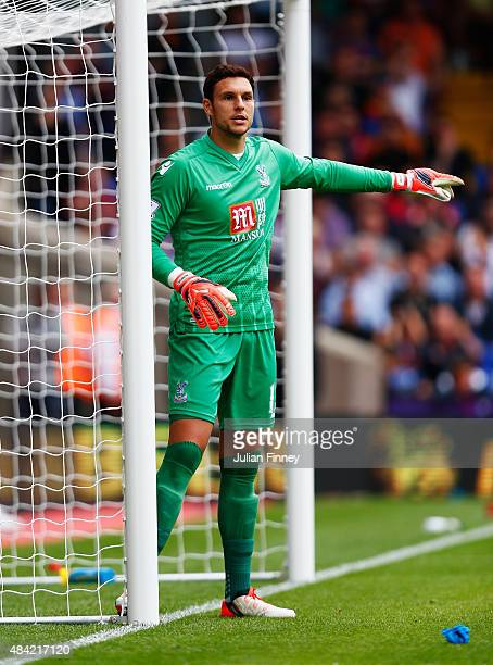 Alex McCarthy of Crystal Palace gives instructions during the Barclays Premier League match between Crystal Palace and Arsenal at Selhurst Park on...