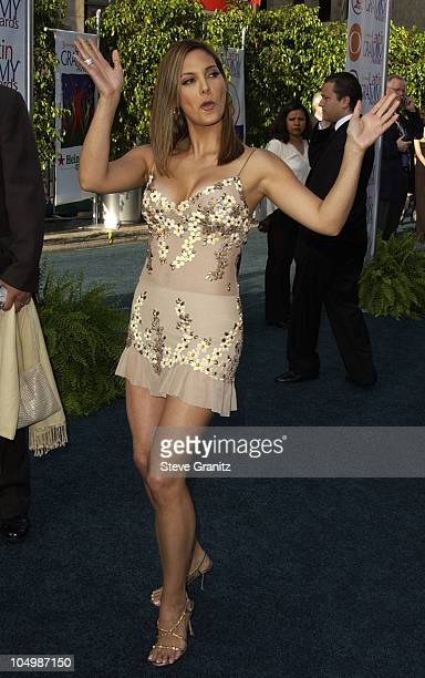Alex Meneses during 3rd Annual Latin GRAMMY Awards Arrivals at Kodak Theatre in Hollywood California United States