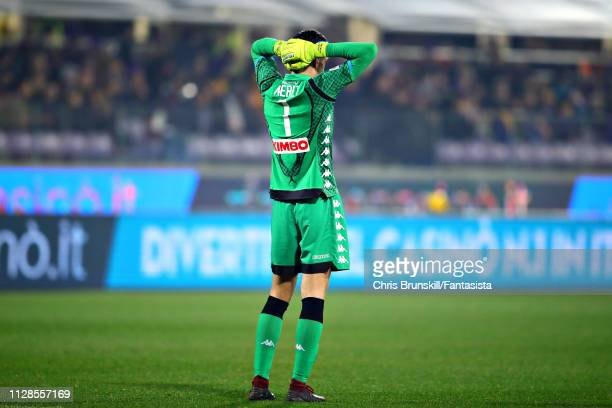 Alex Meret of SSC Napoli reacts during the Serie A match between ACF Fiorentina and SSC Napoli at Stadio Artemio Franchi on February 09 2019 in...