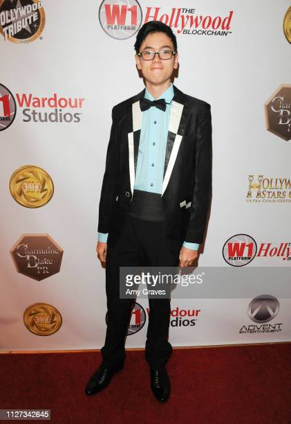 Alex Nia attends the Charmaine Blake and the HOLLYWOOD STARS GALA™ Oscar® Viewing Party at The Beverly Hilton Hotel on February 24 2019 in Beverly...