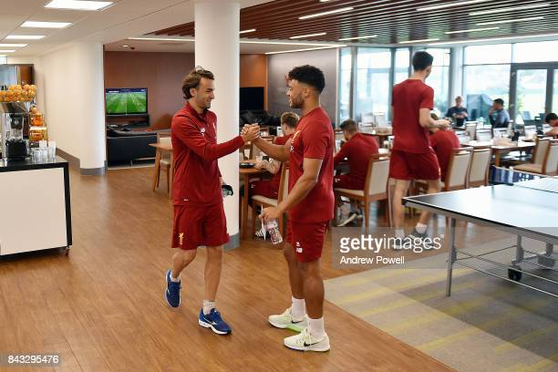 Alex Oxlade Chamberlain and Marko Grujic of Liverpool at Melwood Training Ground on September 6 2017 in Liverpool England