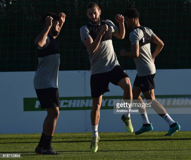Alex OxladeChamberlain and Adam Lallana of Liverpool during a training session at the Marbella Football Center on February 15 2018 in Marbella Spain