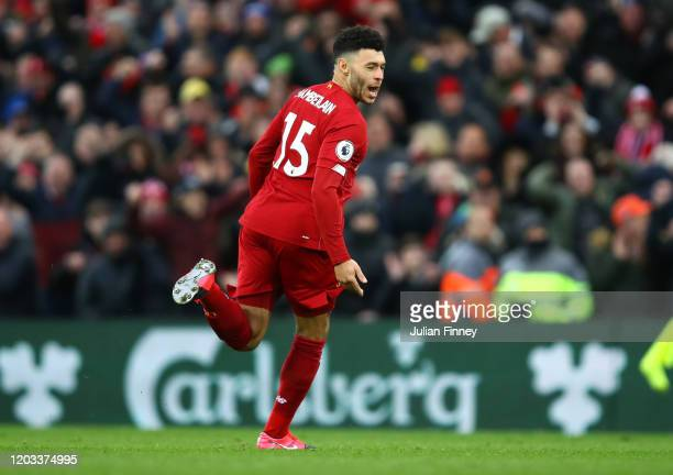 Alex OxladeChamberlain of Liverpool celebrates after scoring his team's first goal during the Premier League match between Liverpool FC and...