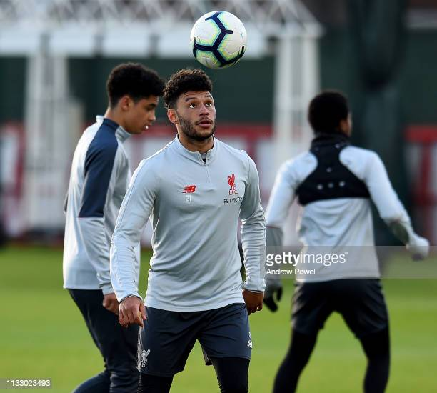 Alex OxladeChamberlain of Liverpool during a training session at Melwood Training Ground on March 01 2019 in Liverpool England