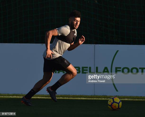 Alex OxladeChamberlain of Liverpool during a training session at the Marbella Football Center on February 15 2018 in Marbella Spain
