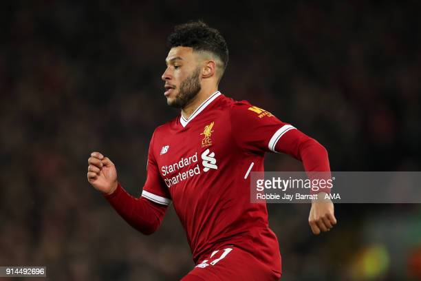 Alex OxladeChamberlain of Liverpool during the Premier League match between Liverpool and Tottenham Hotspur at Anfield on February 4 2018 in...