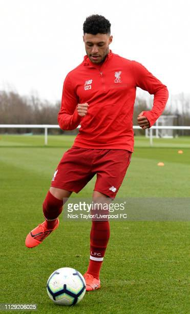 Alex OxladeChamberlain of Liverpool warms up before the PL2 game at Derby County Training Ground on March 8 2019 in Derby England