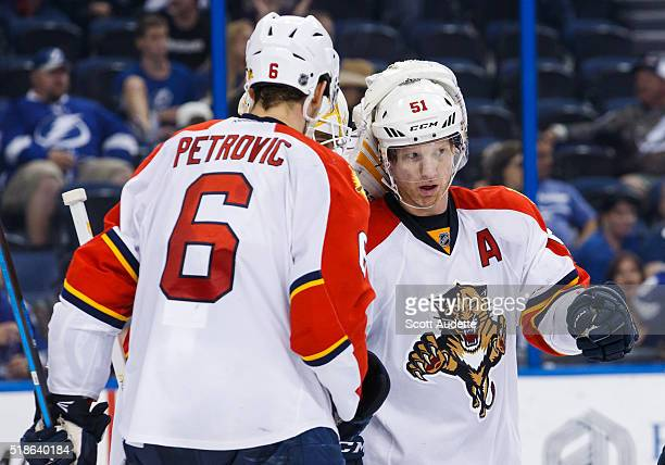 Alex Petrovic and Brian Campbell of the Florida Panthers celebrates the win against the Tampa Bay Lightning at the Amalie Arena on March 26 2016 in...
