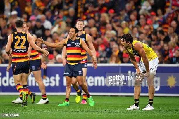 Alex Rance of the Tigers looks on during the round six AFL match between the Adelaide Crows and the Richmond Tigers at Adelaide Oval on April 30 2017...