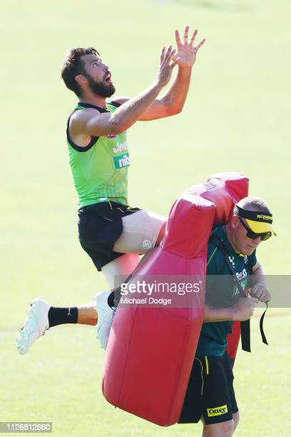 Alex Rance of the Tigers marks the ball during a Richmond Tigers AFL training session at Punt Road Oval on February 02 2019 in Melbourne Australia