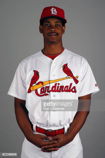 Alex Reyes of the St Louis Cardinals poses during Photo Day on Tuesday February 20 2018 at Roger Dean Stadium in Jupiter Florida