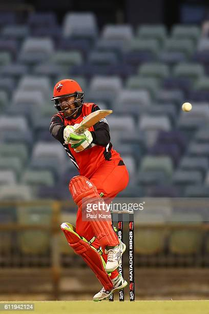 Alex Ross of the Redbacks bats during the Matador BBQs One Day Cup match between Western Australia and South Australia at WACA on October 2 2016 in...