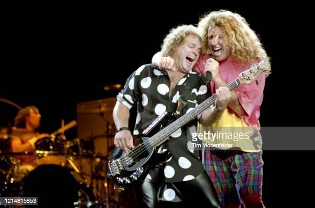 Alex Van Halen Michael Anthony and Sammy Hagar of Van Halen perform at Shoreline Amphitheatre on September 13 1991 in Mountain View California