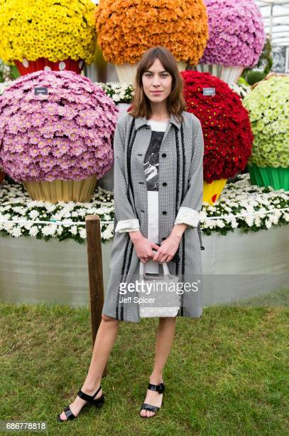 Alexa Chung attends RHS Chelsea Flower Show press day at Royal Hospital Chelsea on May 22 2017 in London England