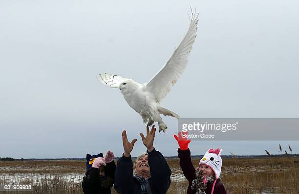 Alexa Nihill left and her sister Carmella of Pembroke help their grandfather Norman Smith of Whitman release a snowy owl named Salisbury at Salisbury...