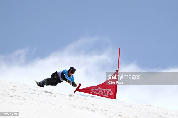 Alexander Bergmann of Germany competes in the final of the Men's Parallel Giant Slalom on day 9 of the FIS Freestyle Ski Snowboard World...