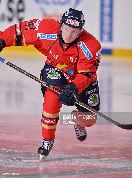 Alexander Falk during a Hockey Allsvenskan game in Johanneshov Sweden
