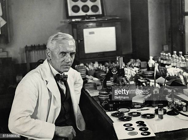 Alexander Fleming Scottish bacteriologist, working in his laboratory on the development of penicillin. Undated photograph, circa 1929.