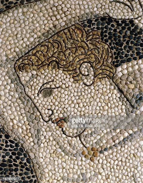Alexander the Great and Hephaestion during a lion hunt ca 320 BC mosaic from the peristyle house 1 Room C Pella Greece Detail showing the head of...