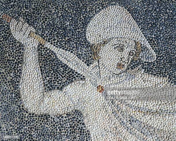 Alexander the Great and Hephaestion during a lion hunt ca 320 BC mosaic from the peristyle house 1 Room C Pella Greece Detail showing Alexander Greek...