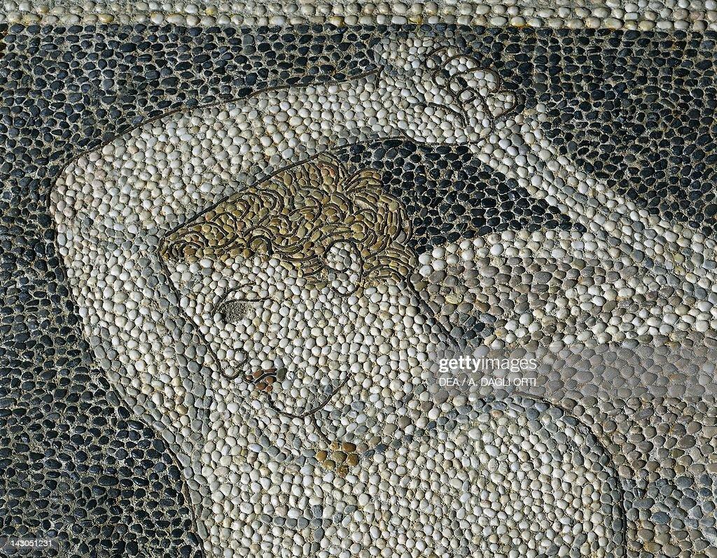 alexander the great hephaestion