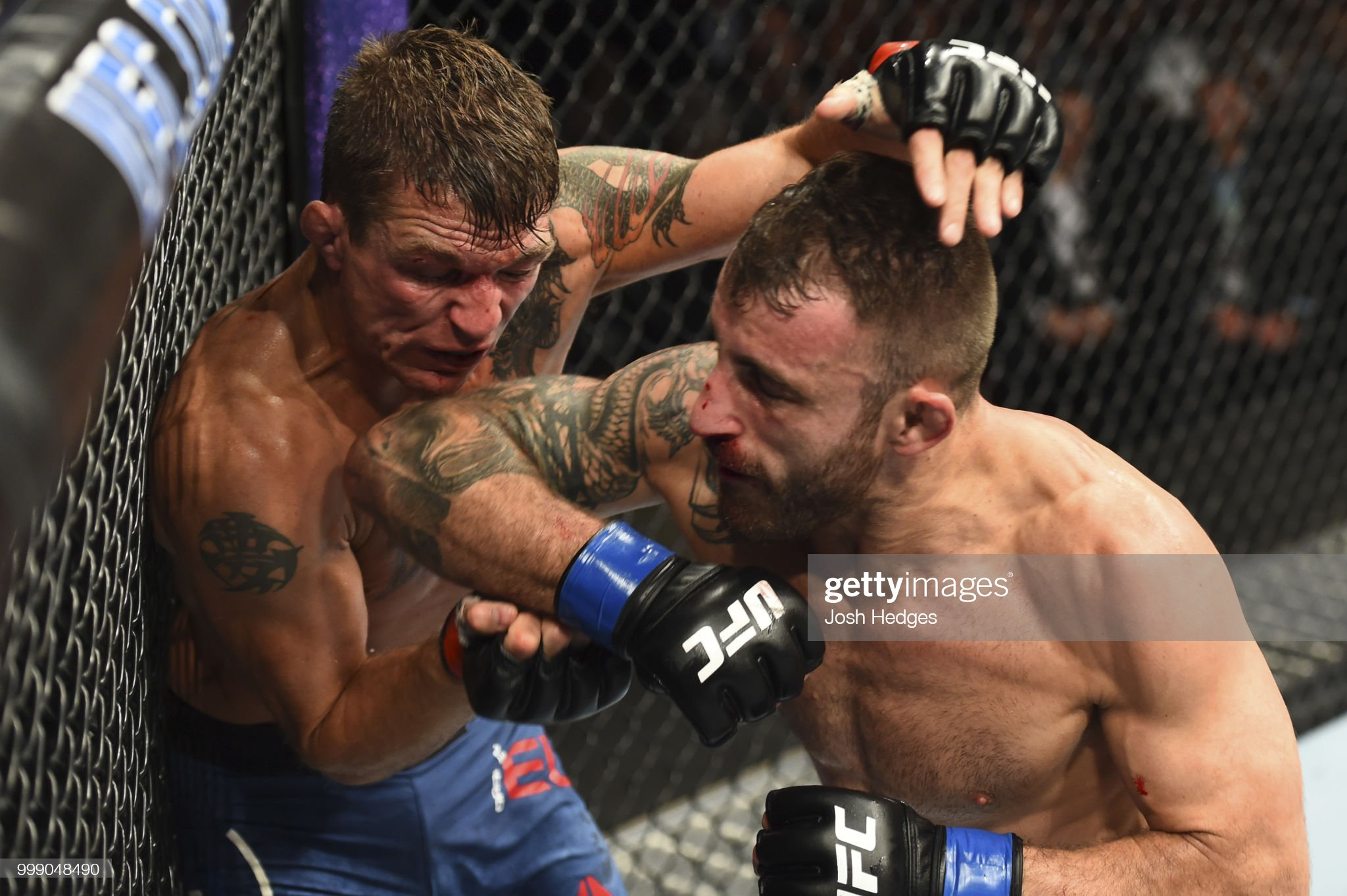 UFC Fight Night: Elkins v Volkanovski : News Photo