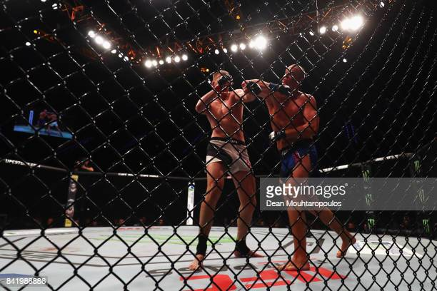 Alexander Volkov of Russia and Stefan Struve of the Netherlands compete in their Heavyweight bout during the UFC Fight Night at Ahoy on September 2,...
