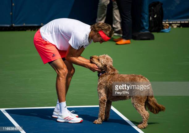 Alexander Zverev of Germany plays with a dog during a practice session before the start of the US Open at the USTA Billie Jean King National Tennis...