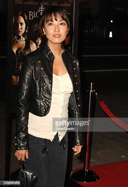 Alexandra Bokyun Chun during BloodRayne Los Angeles Premiere Arrivals at Mann's Chinese in Hollywood California United States