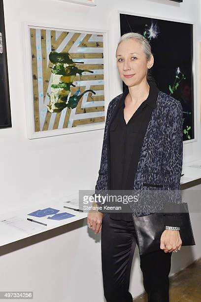 Alexandra Grant attends the LAXART's 10 Year Anniversary Benefit Presented By Distinct on November 15 2015 in Los Angeles California