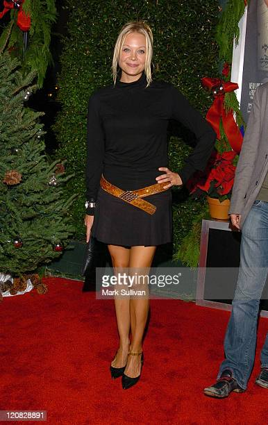 Alexandra Holden during 'Just Friends' Los Angeles Premiere Arrivals at Mann Village Theatre in Westwood California United States