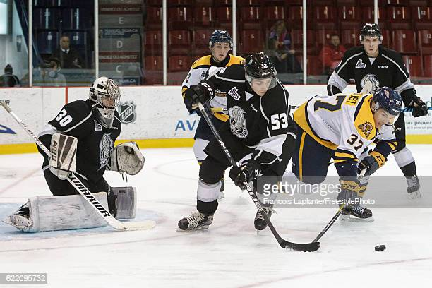 Alexis D'Aoust of the Shawinigan Cataractes battles for the puck against Matthew Thorpe of the Gatineau Olympiques as Mark Grametbauer guards his net...