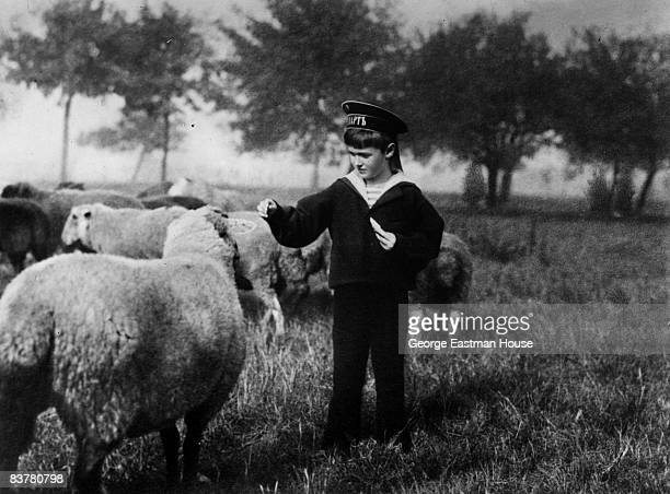 Alexis Tsarevich Romanov the only son of Tsar Nicholas II of Russia hand feeding sheep He was murdered by Bolsheviks at Yekaterinburg along with the...