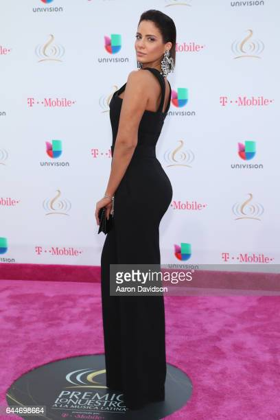 Aleyda Ortiz attends Univision's 29th Edition of Premio Lo Nuestro A La Musica Latina at the American Airlines Arena on February 23 2017 in Miami...