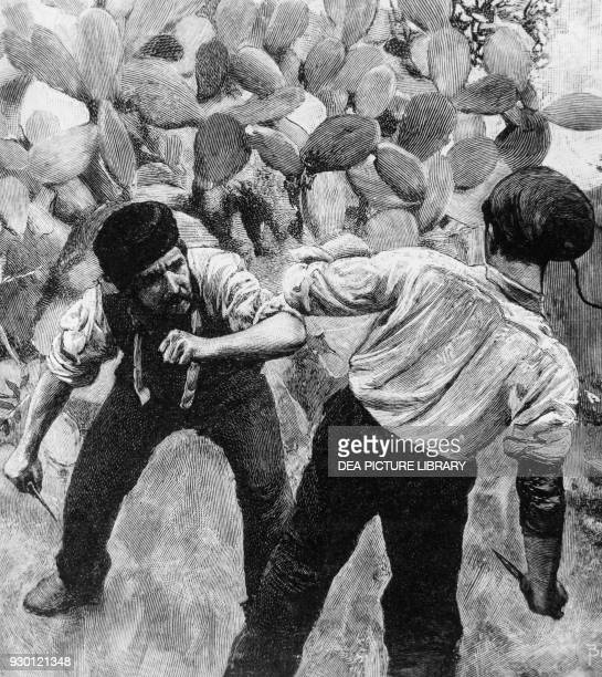 Alfio and Turiddu squaring off between prickly pears illustration from the novel Rustic Chivalry by Giovanni Verga
