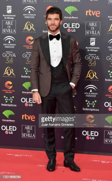 Alfonso Bassave attends the Goya Cinema Awards 2020 during the 34th edition of the Goya Cinema Awards at Jose Maria Martin Carpena Sports palace on...