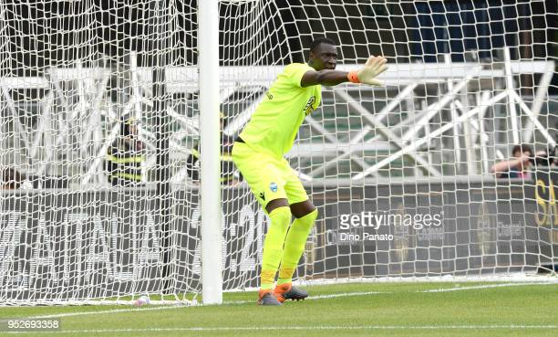 Alfred Gomis goalkeeper of Spal issues instructions as his players during the serie A match between Hellas Verona FC and Spal at Stadio Marc'Antonio...