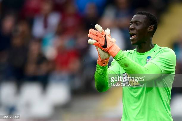 Alfred Gomis of Spal gestures during the Serie A football match between Torino FC and Spal Torino FC won 21 over Spal
