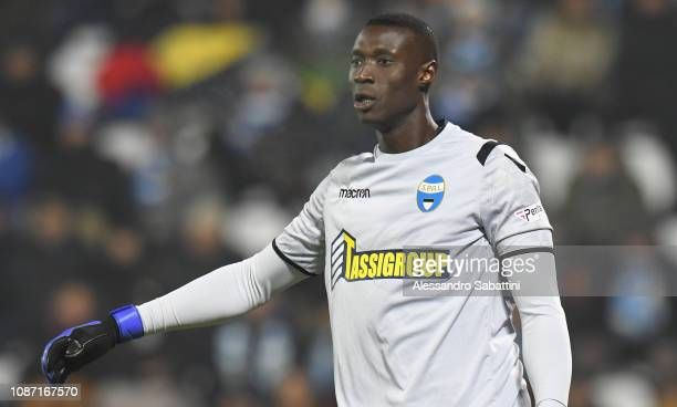 Alfred Gomis of Spal gestures during the Serie A match between Spal and Udinese at Stadio Paolo Mazza on December 26 2018 in Ferrara Italy