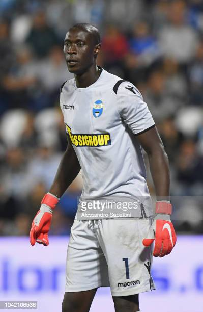 Alfred Gomis of Spal looks on during the serie A match between SPAL and US Sassuolo at Stadio Paolo Mazza on September 27 2018 in Ferrara Italy