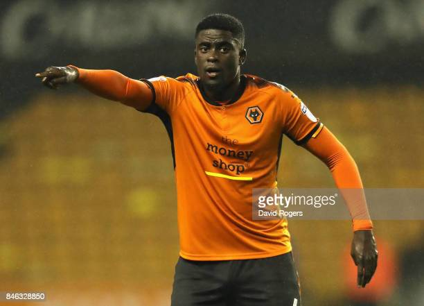 Alfred N'Diaye of Wolverhampton Wanderers shouts instructions during the Sky Bet Championship match between Wolverhampton Wanderers and Bristol City...