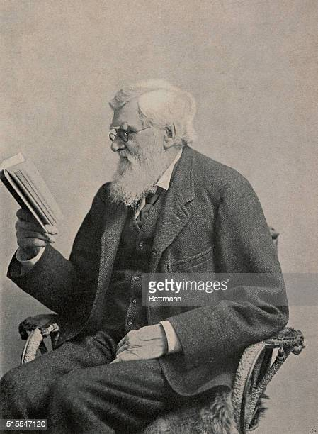Alfred Russel Wallace English naturalist trained as surveyor and architect He devoted himself to natural history and originated independently a...