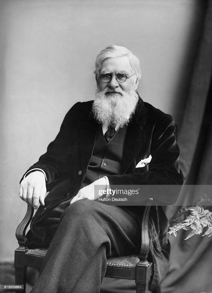 Alfred Russell Wallace : News Photo